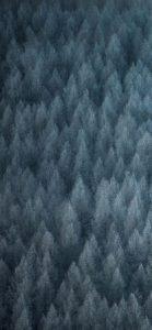 Realme Q Wallpapers