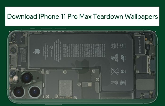 Download iPhone 11 Pro (Max) Teardown Wallpapers [QHD+]