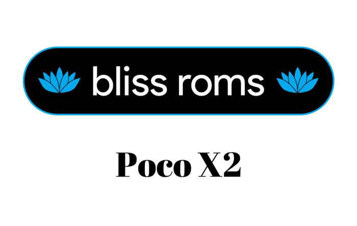 Custom ROMs for Poco X2