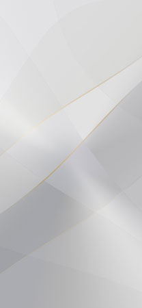ZTE Axon 20 Wallpapers