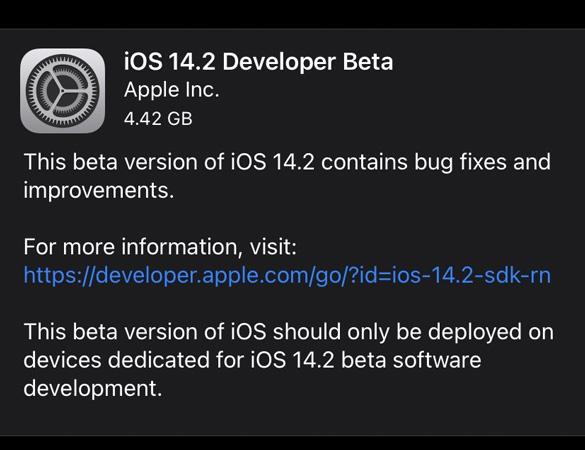 download iOS 14.2 beta update