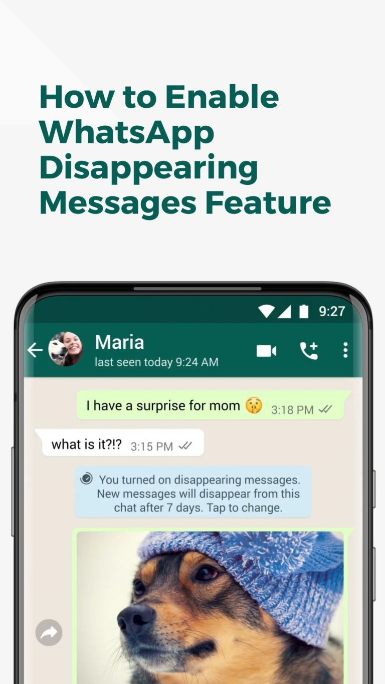 WhatsApp Disappearing Messages feature live in India, Enable Now